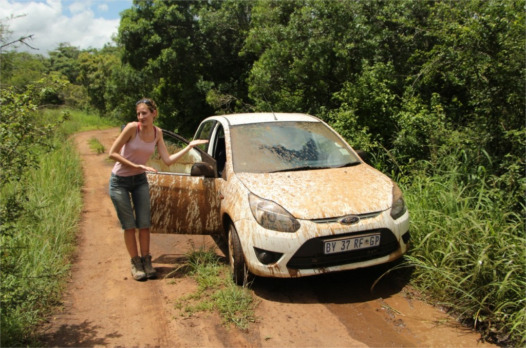 Camouflage-auto