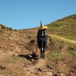 Het paard is het vervoersmiddel bij uitstek voor de Basotho. Niet moeilijk te begrijpen als je ziet hoe onbereikbaar sommige dorpen zijn.