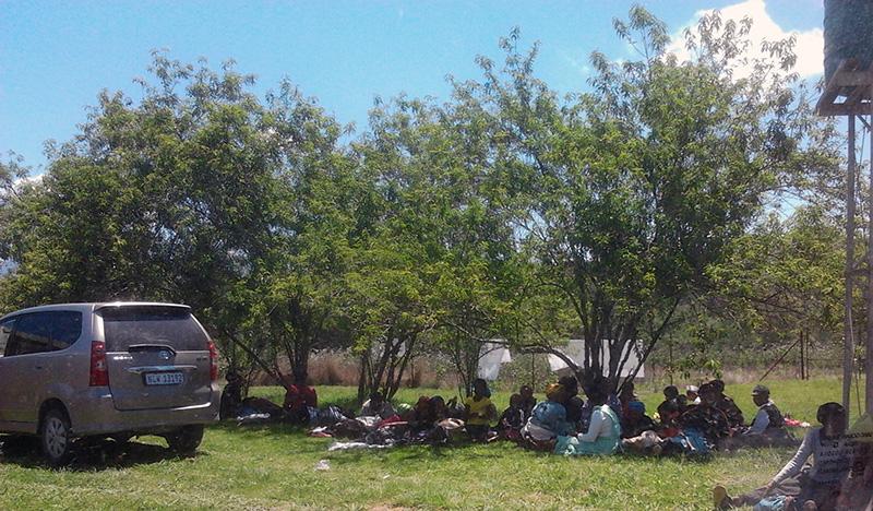 Mensen onder een boom aan de clinic