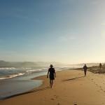 Behoud van verwondering – Take a walk on the wild side