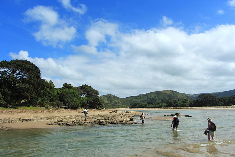 Sommige rivieren kan je te voet oversteken. We vertrouwen de gids die zegt dat hier geen haaien in het water zitten.